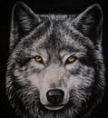 odinokiy volk