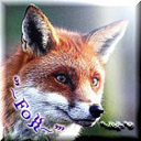 Fox2359727