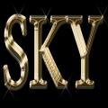 rDJ Sky